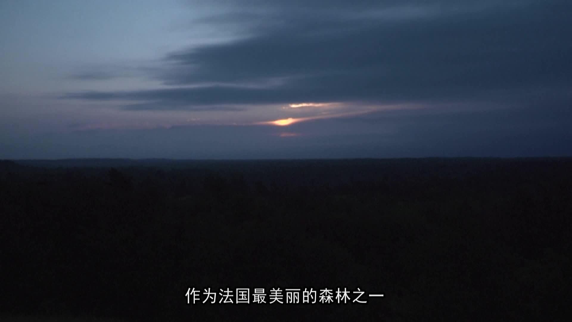 法国枫丹白露森林隐藏史前宝藏