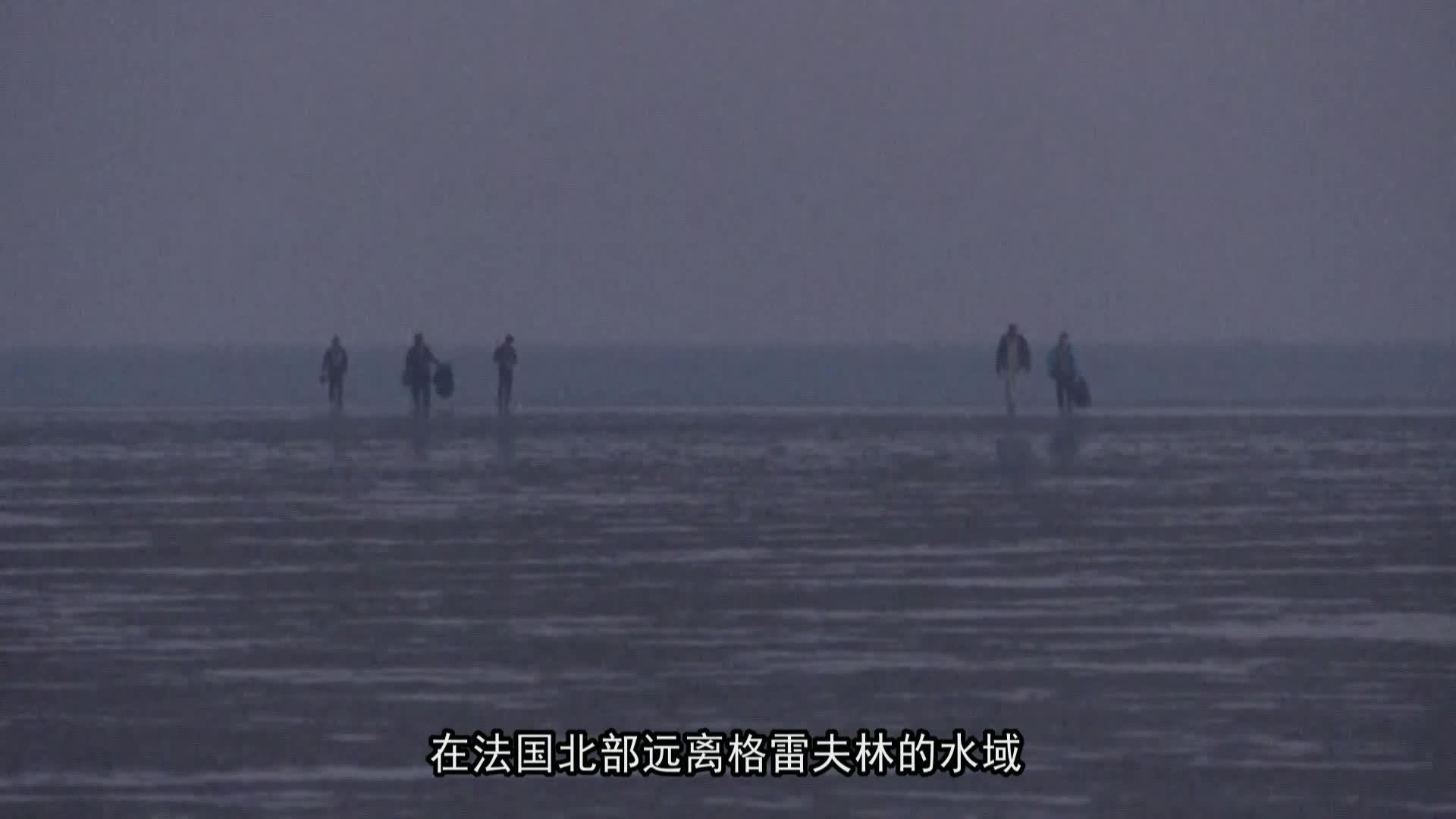 法国移民穿越英吉利海峡偷渡人数激增