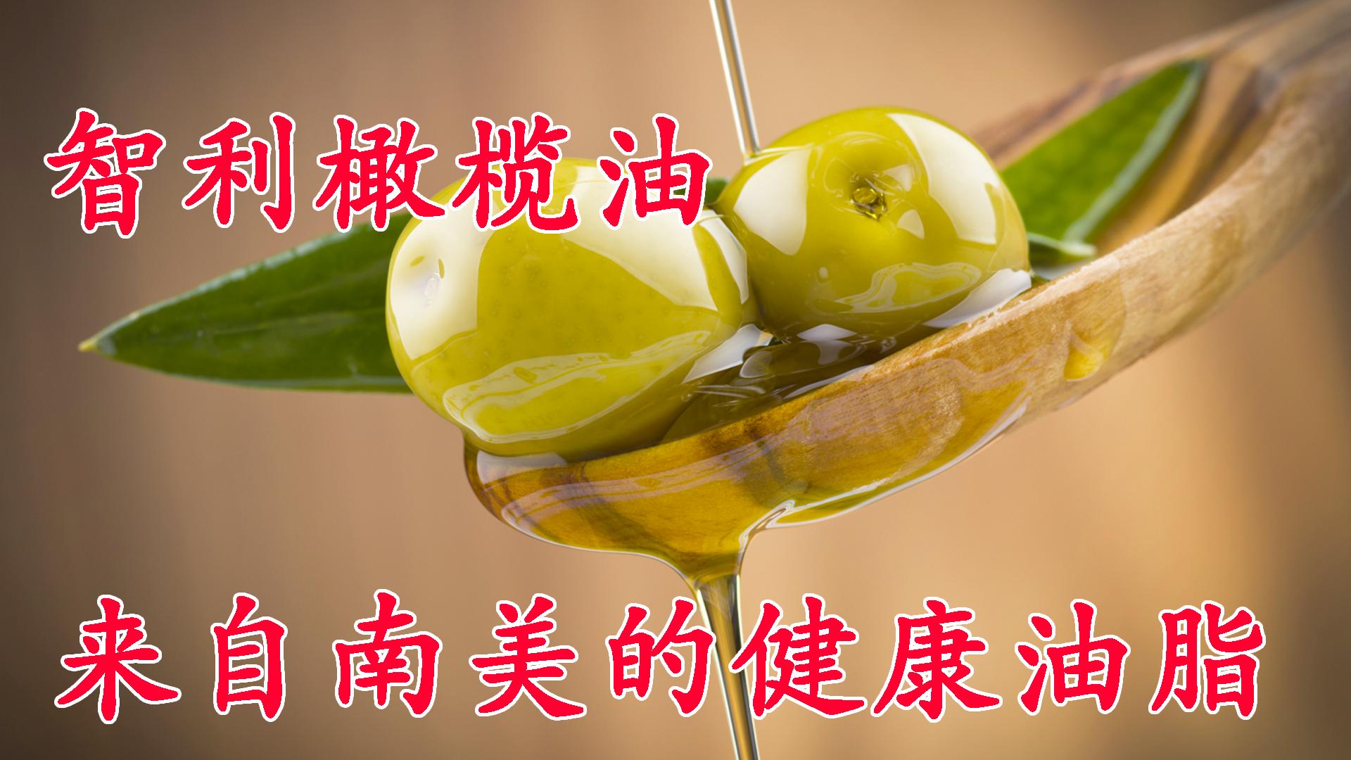 智利橄榄油,来自南美的健康油脂