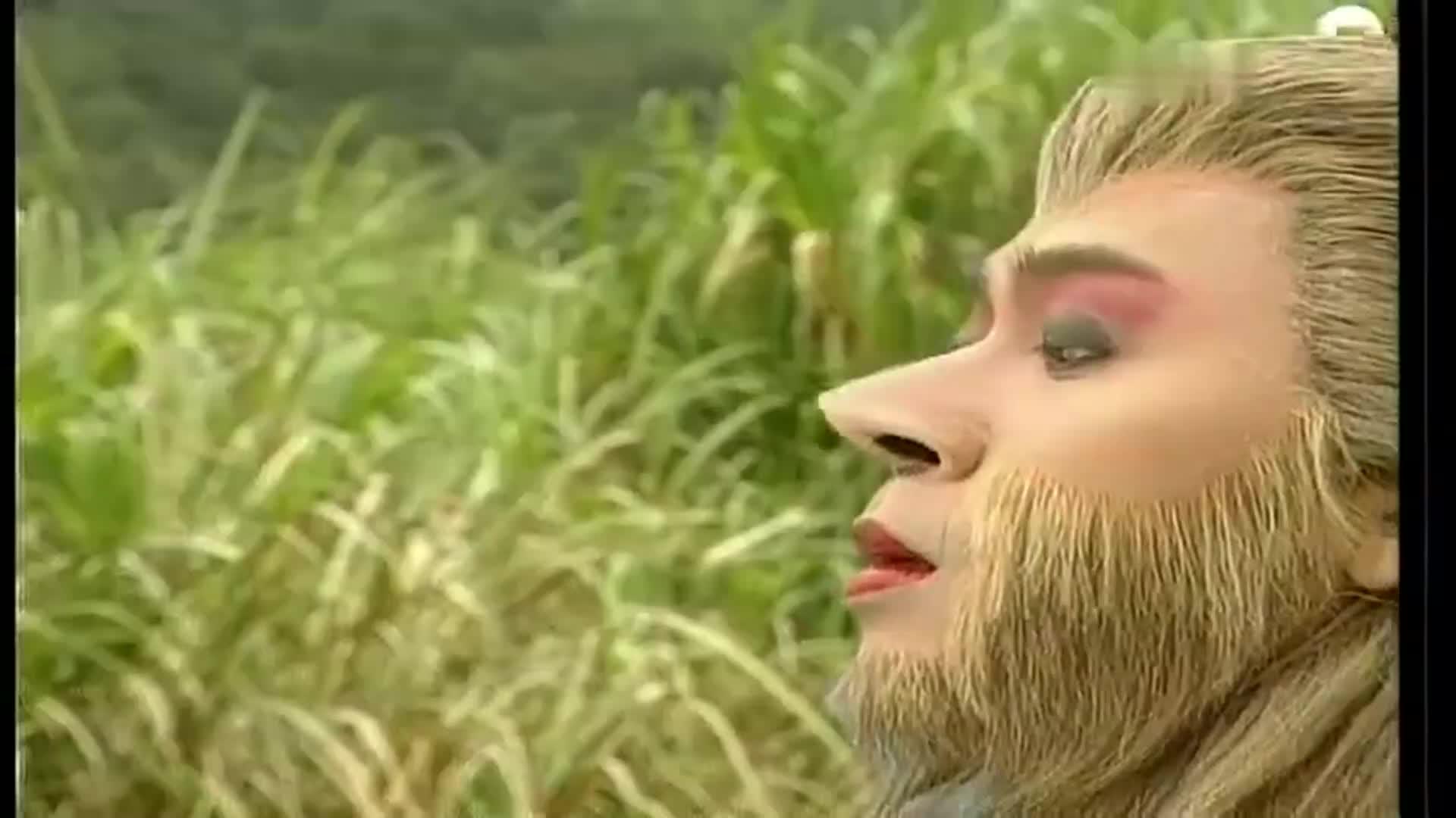 美猴王:通臂猿猴吞下谛听,狂妄挑战悟空,不料被悟空打回了原形