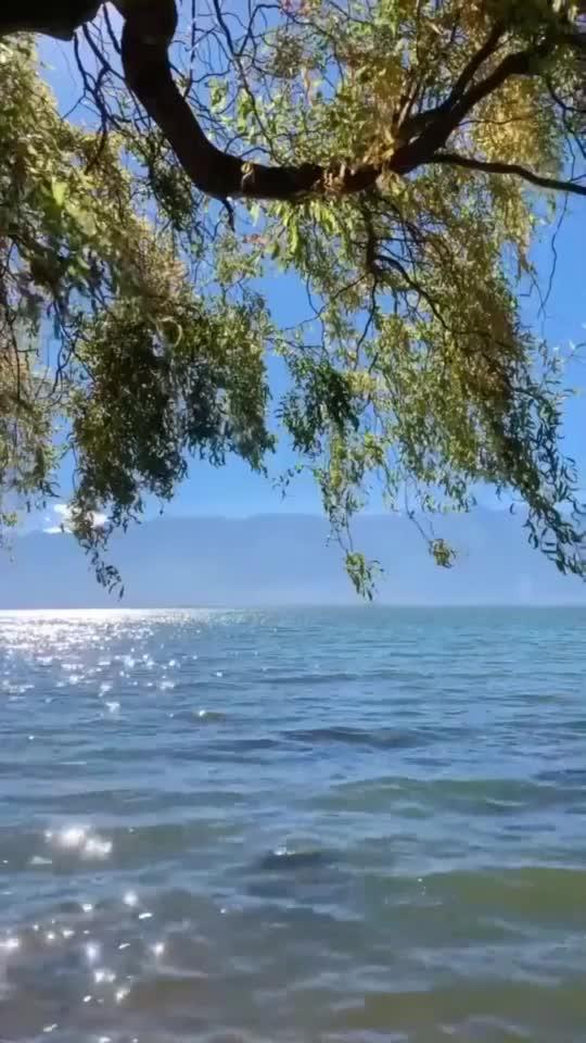 见识一下大理洱海看到这一幕网友小燕子最向往的地方