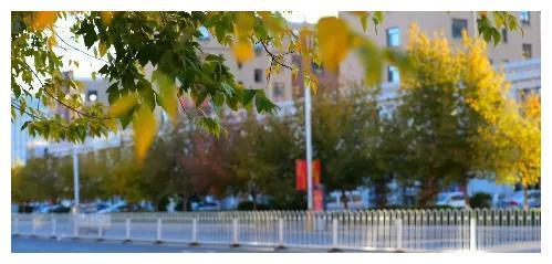 在翁牛特旗开启最美的秋天,约不约?