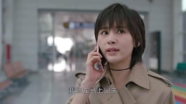 曲筱绡为了赵启平连生意都不做了!还要订最快的一班航班回来