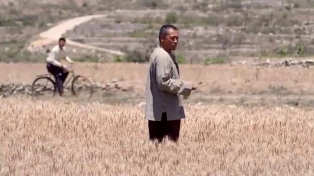 老农民:区书记给生产队下指令:亩产一万斤,队长一听当场傻住
