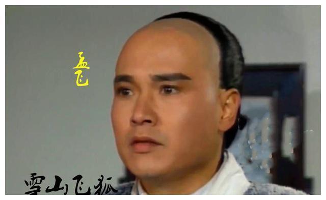 这版雪山飞狐演员阵容十分强大,赵雅芝仅是配角,主角原定刘德华