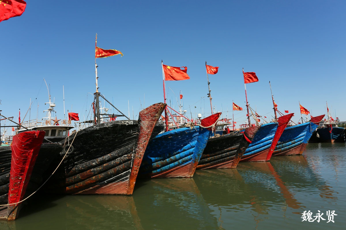 辽宁绥中渔港:风大渔船没出海,渔民说出一次海能捕捞四五万斤鱼
