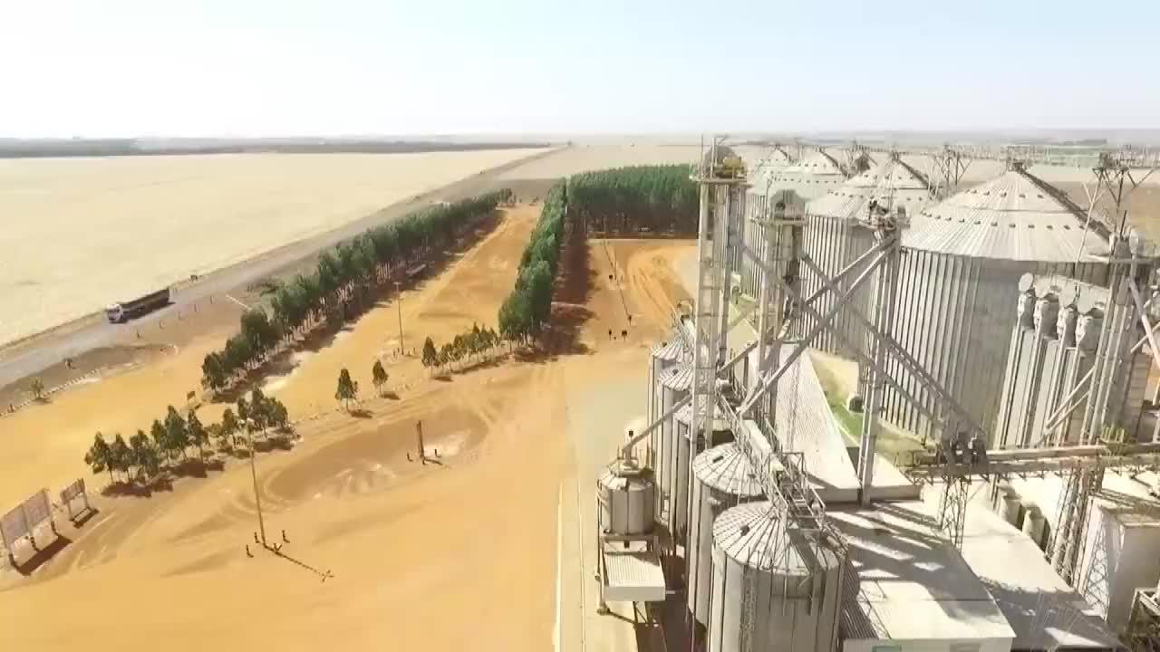 巴西大豆迎来收获季农户指望中国市场去年对华出口5800万吨