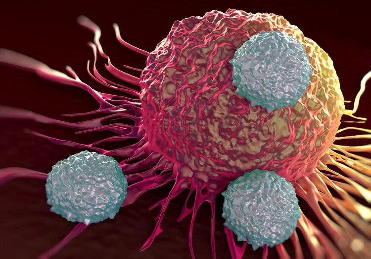"""抗癌免疫疗法,你了解多少?它会是""""攻克癌症""""的最后归宿吗?"""