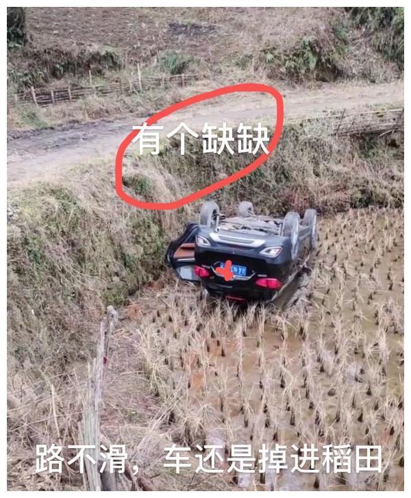 """重庆小伙开车回家过年,到村口却飞进了稻田,""""2天都没弄上来"""""""