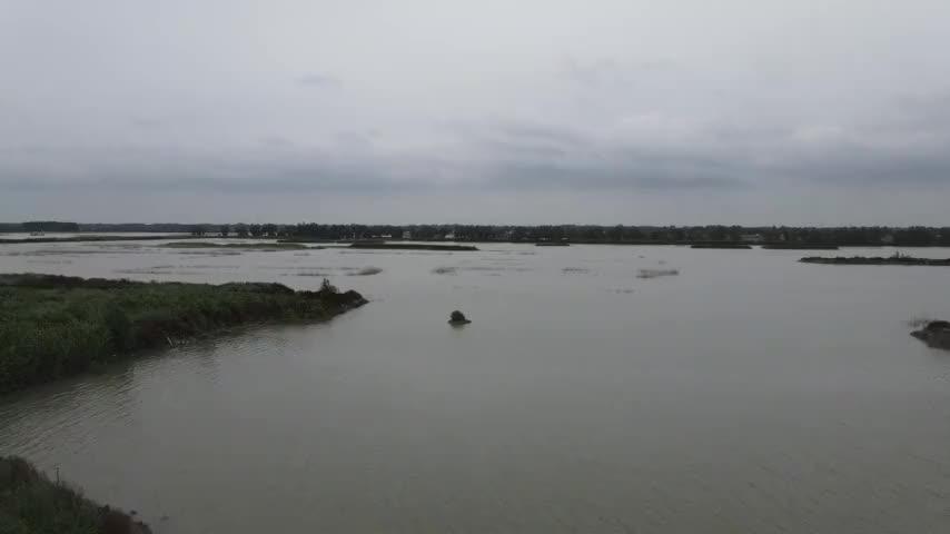 航拍济南章丘白云湖湿地,湖光潋滟景色优美,是国家级湿地公园