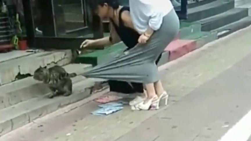美女穿着裙子和闺蜜出门,结果被路边的猫咪抓着不放,网友:可爱