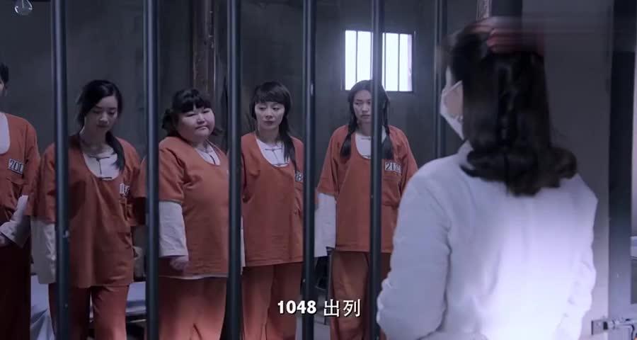 女囚犯对医生说了一串数字,医生秒懂,立马日本间谍带走