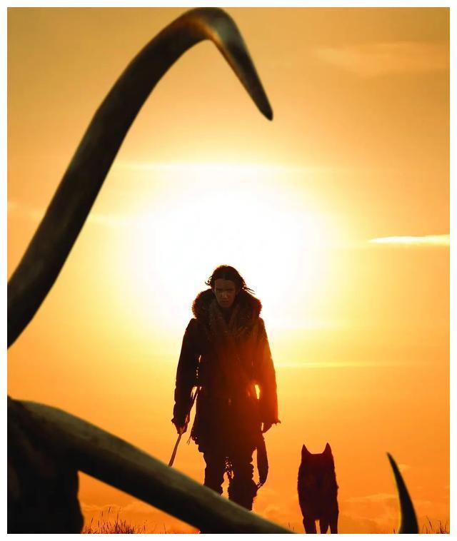 《阿尔法:狼伴归途》:明明是一部训狗的电影,非要跟狼扯关系