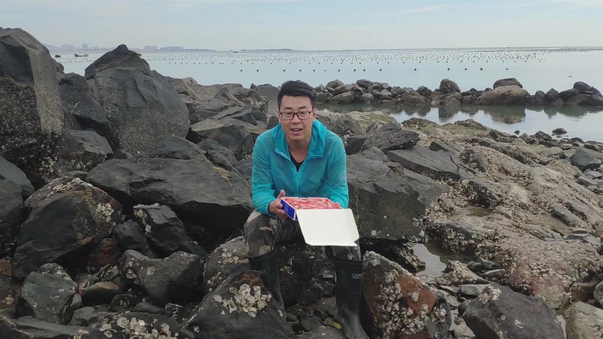 9.16 北极虾炖豆腐