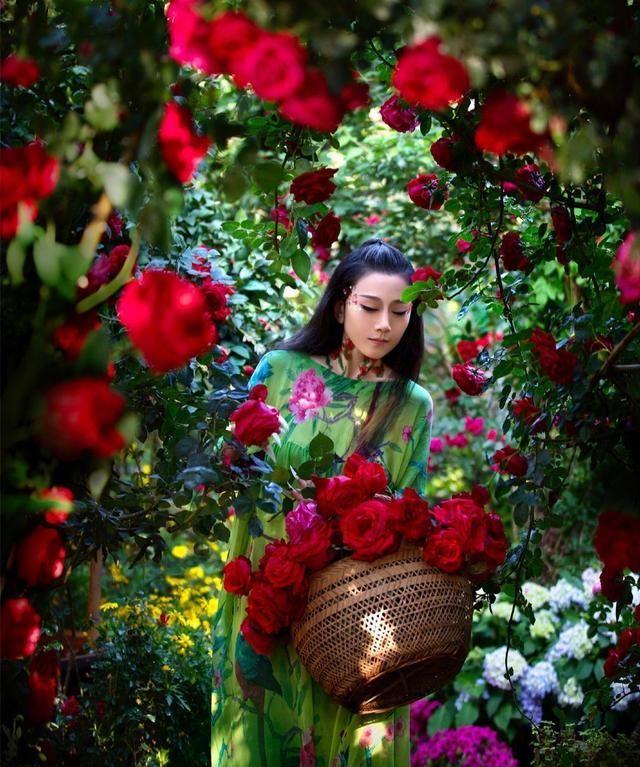 杨丽萍四周被玫瑰花包围,宛如花中仙子