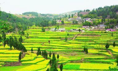 什么叫原生态旅游观光休闲型农业?