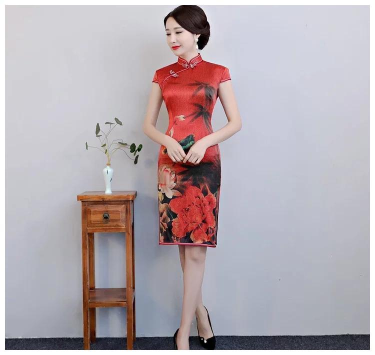 衣橱必备短款旗袍,时尚中国风,耀眼如玫瑰!