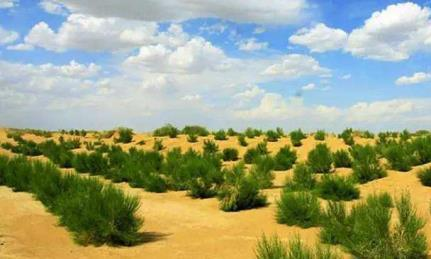 中国最无奈的水利工程,绿洲变沙漠,外国人愣住了:怎么做到的?