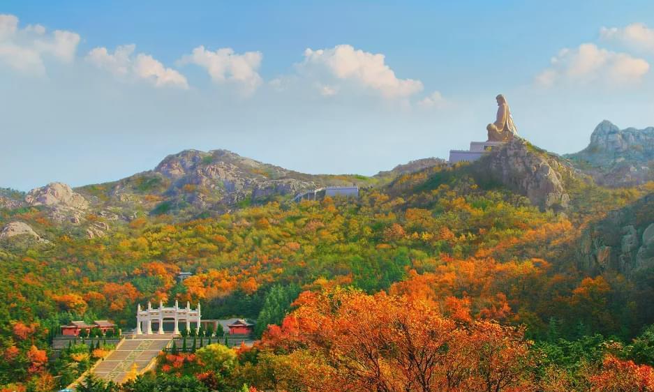 免费,半价!重阳将至,这个超美的赏秋圣境值得和爸妈一起来看!
