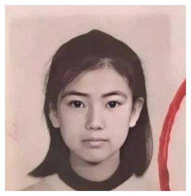 高圆圆证件照曝光,错付6年感情张亚东,嫁对男神赵又廷,很幸福