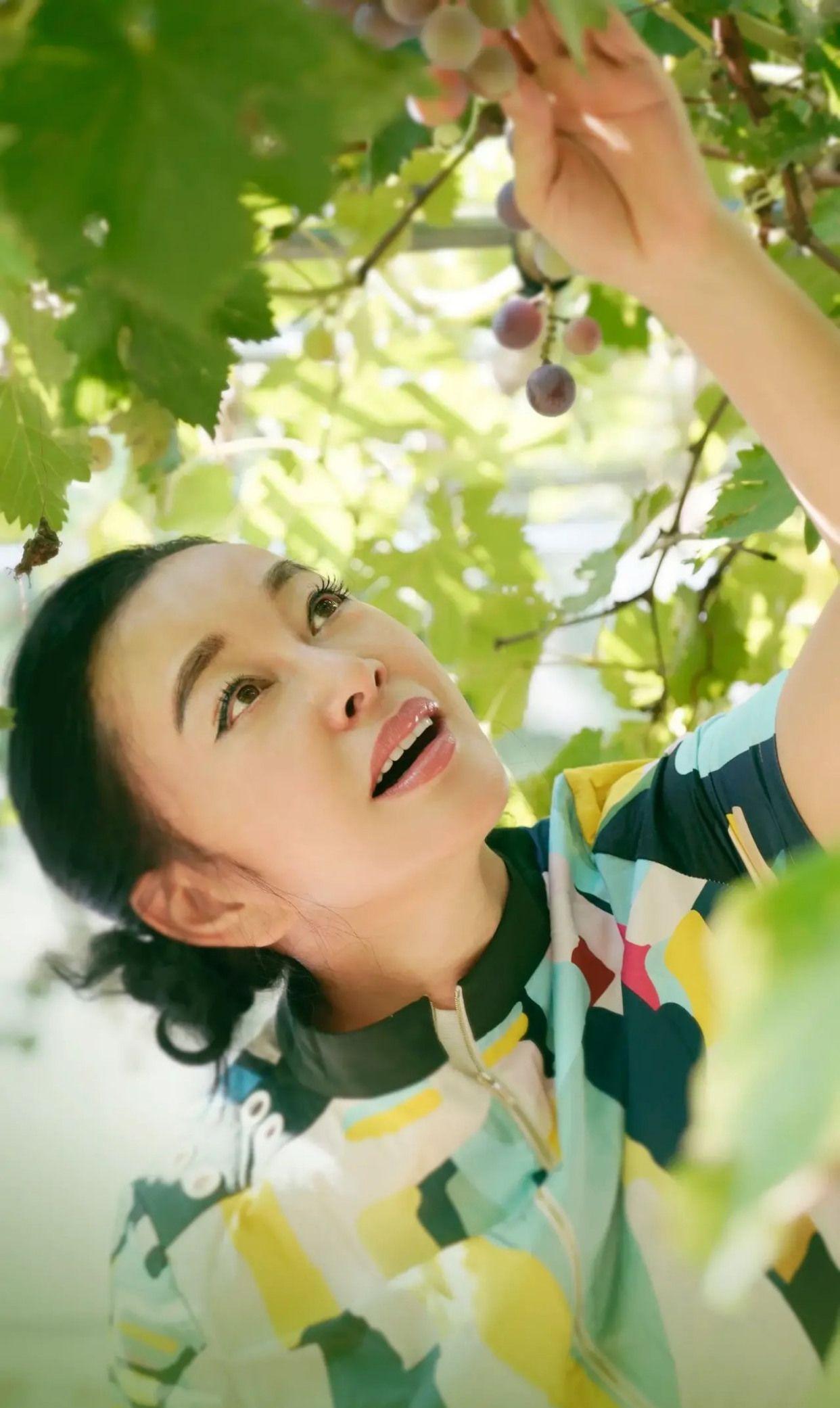 神仙姐姐刘晓庆