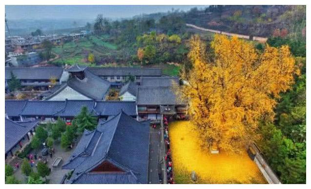 """中国让人""""敬佩""""的寺庙,爆红后明确立场,并非景点拒绝旅游团"""