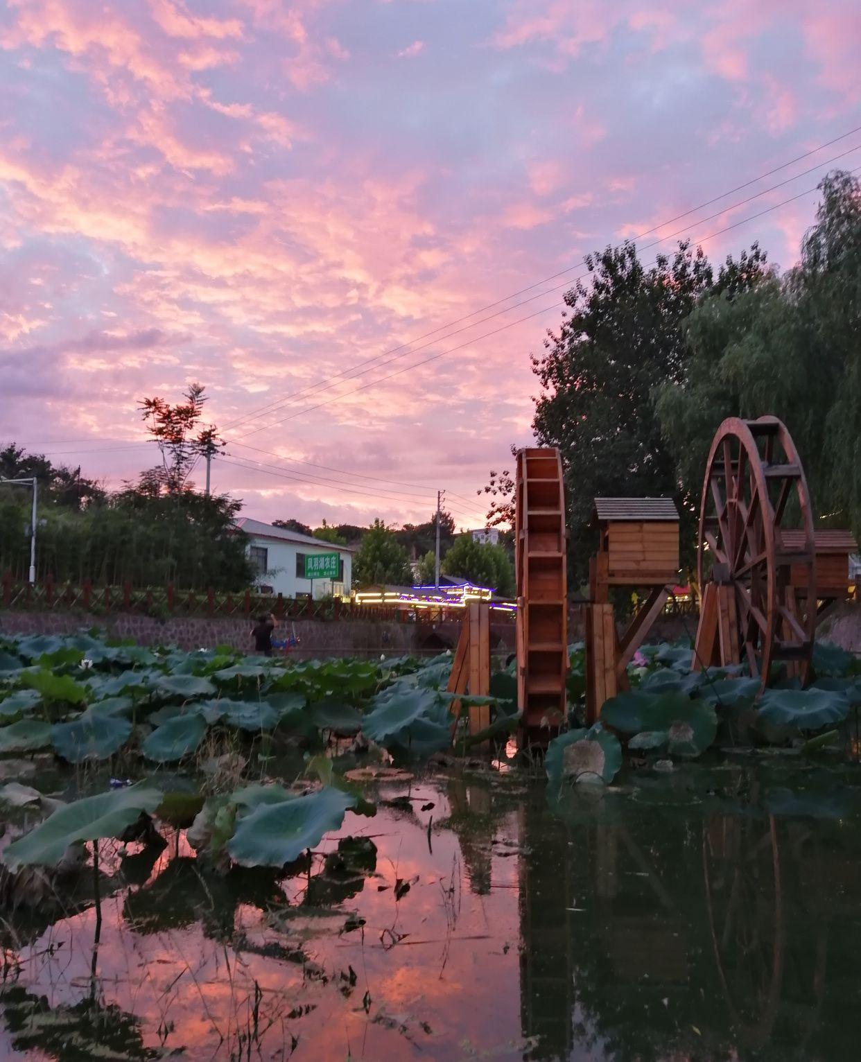 """暴雨后,凤羽湖的天空美得一塌糊涂,完美演绎郑州版""""天空之镜"""""""