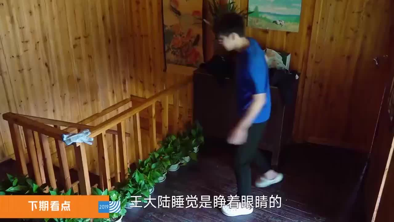 向往的生活陈赫变身蘑菇屋主人要下厨鹿晗滕华涛都来啦