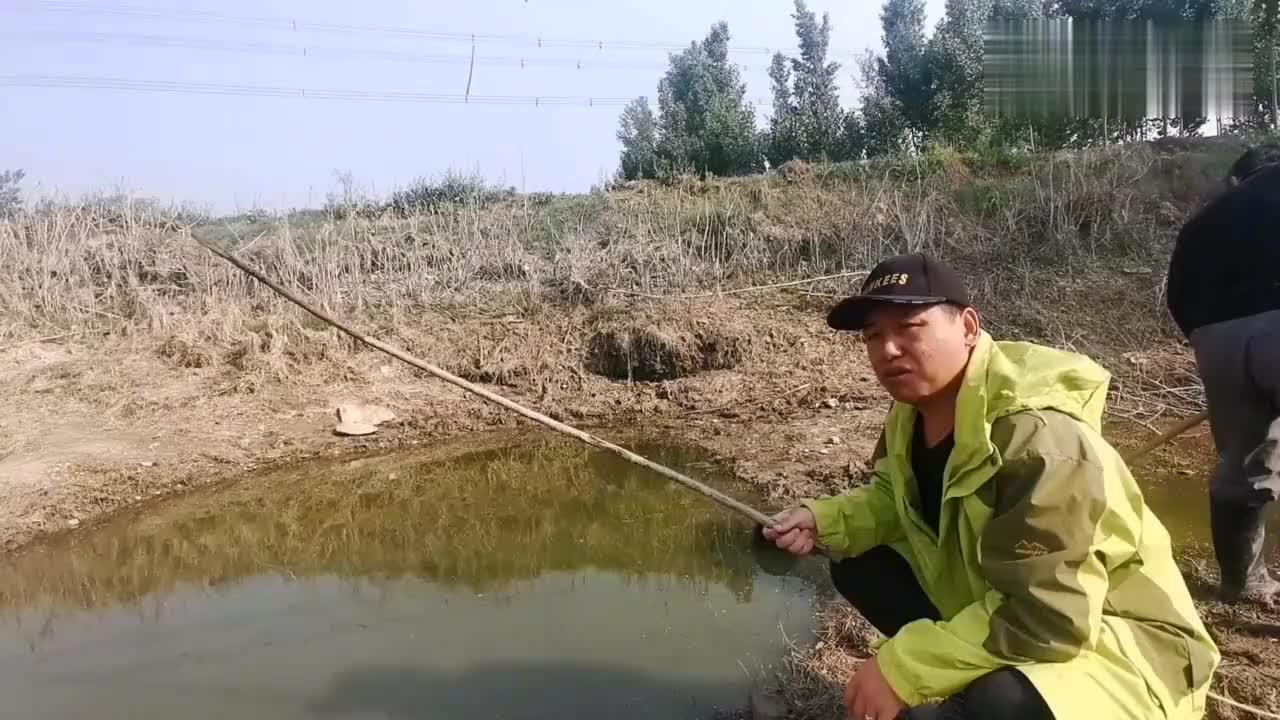 10多年水未干的坑里放水抓鱼突感水面不对劲,回头一瞧,果断放弃