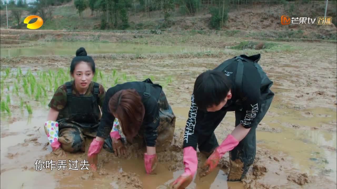 彭昱畅好不容易抓到黄鳝,何炅:这么大呢!黄磊:是大蚯蚓!