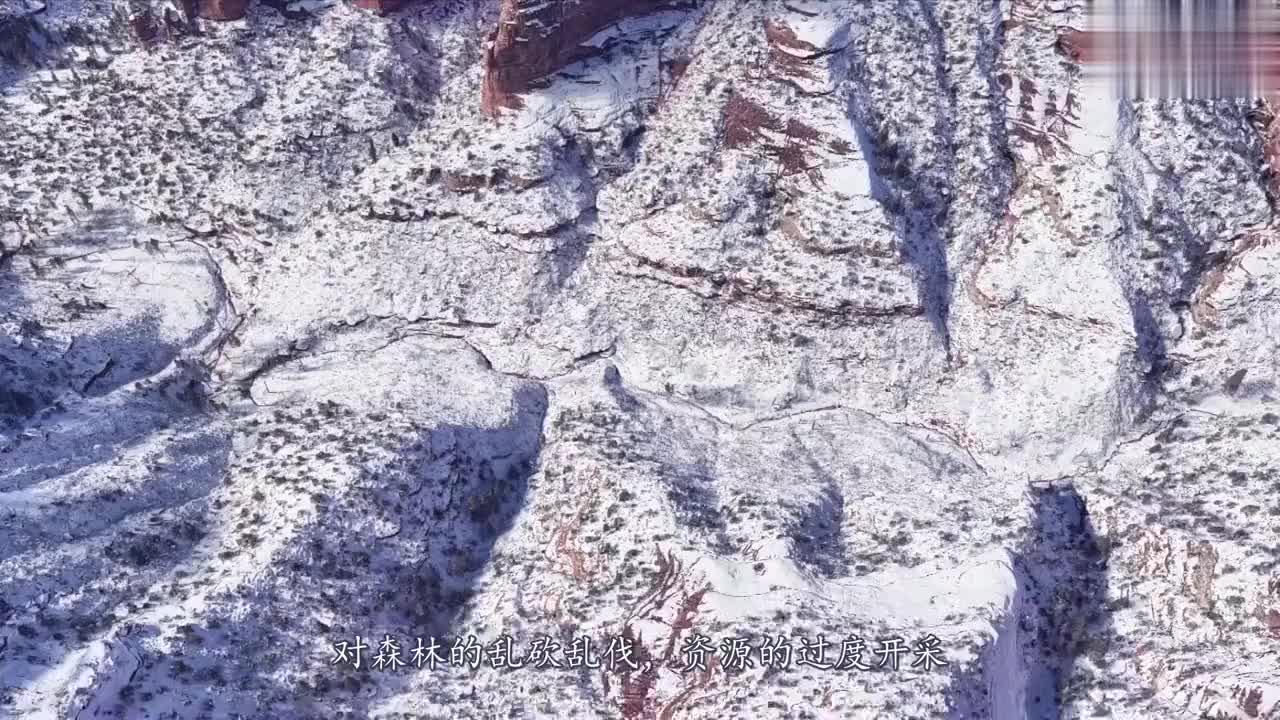中国在塔克拉玛干沙漠种下亿万棵树,如今怎样了?网友:让人意外