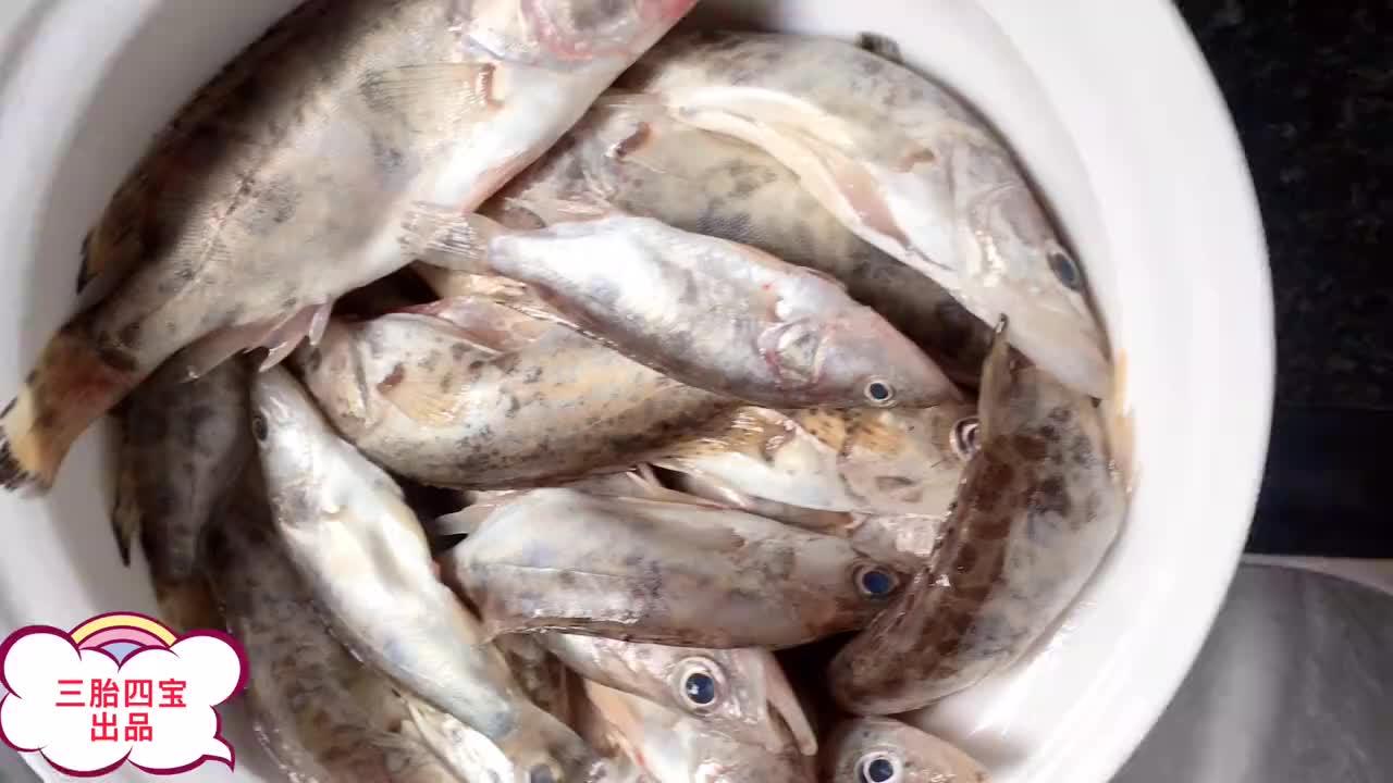 双胞胎闻到鱼香味,瞬间爬上了餐桌,看着鱼直流口水,伸手就要抓