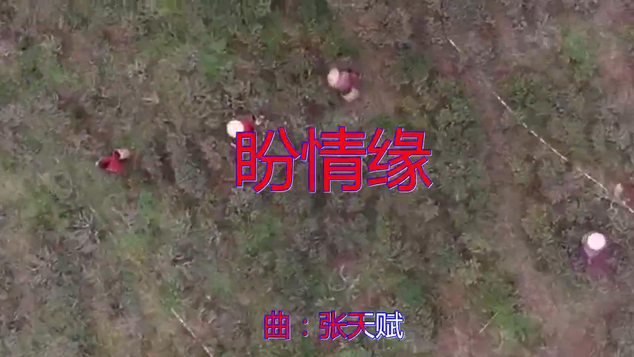 司徒兰芳、安东阳、DJ何鹏的一首《盼情缘》,另有一番风味!