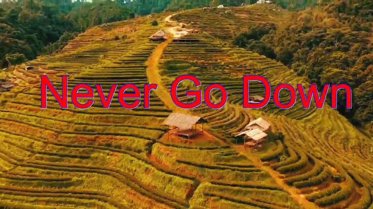 分享一首《Never Go Down》,歌声优美,唱出新风情