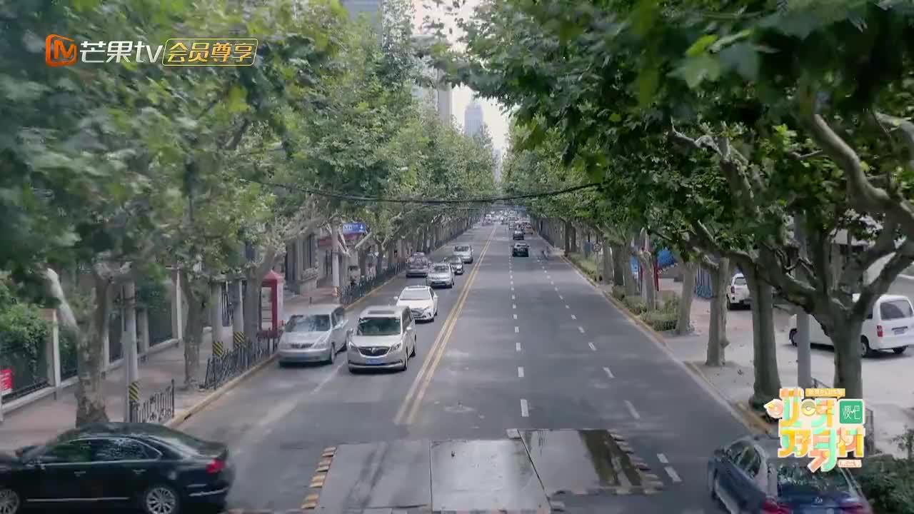 程潇探班宋妍霏,被CC套路帮忙跳舞,潇潇:你确定不是在搞笑?