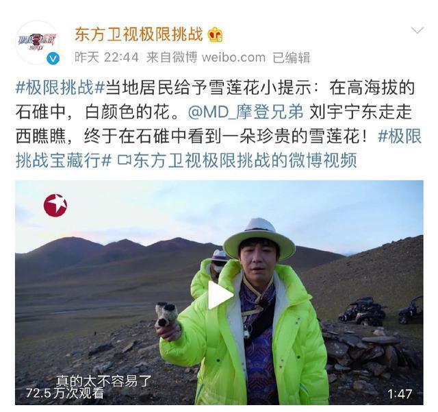 极限挑战刘宇宁摘雪莲花引热议,光明日报称是国家二级保护植物!
