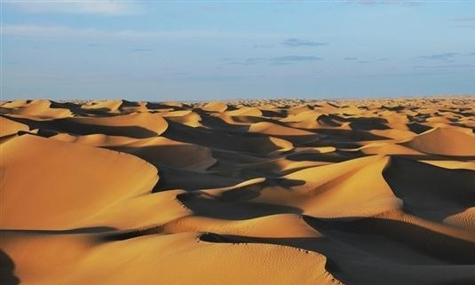 沙漠如果出现暴雨能变成绿洲吗?比如我国最大的塔克拉玛干沙漠?