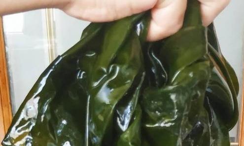 海带怎么做美味怎么样?大厨教你一些小贴士,让他们与众不同