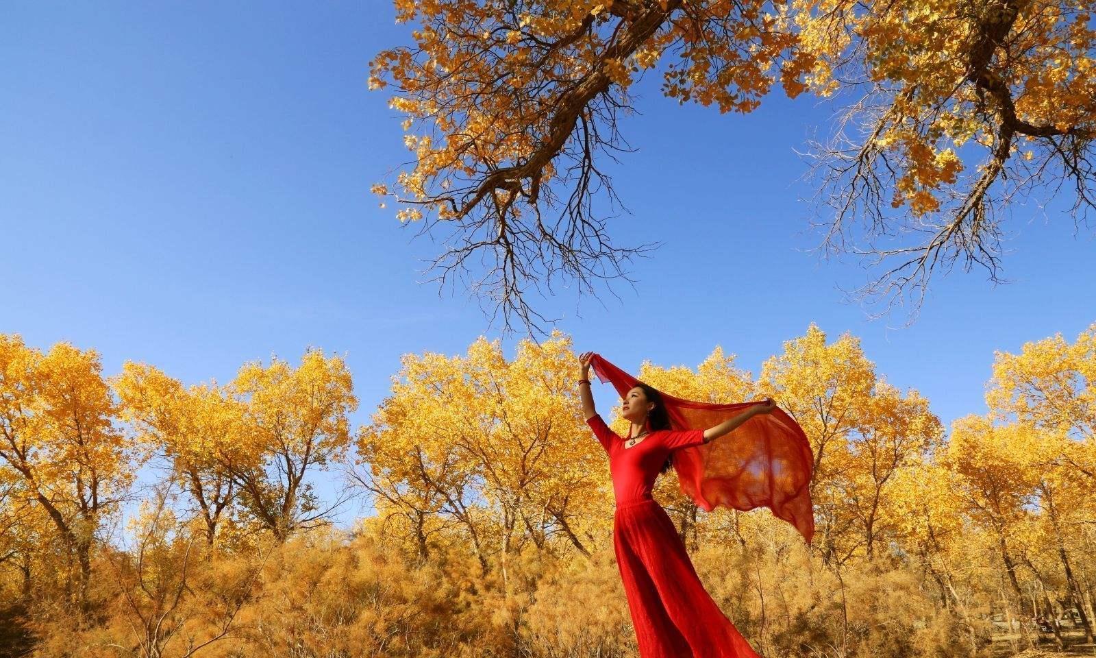 额济纳旗胡杨林——中国最美的秋色,游客的正确游览打卡方式