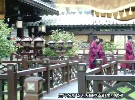 琅琊榜:既无武力又无权势的梅长苏,为何能成为江左盟宗主?