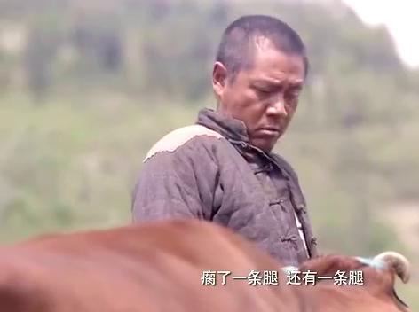 牛大胆花重金,却买回一个瘸腿的牛,大伙都替他发愁