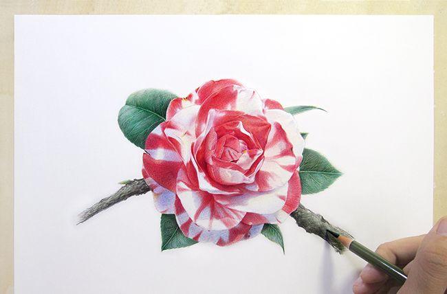 纸上彩铅:来自国人画师的精美手绘作品欣赏
