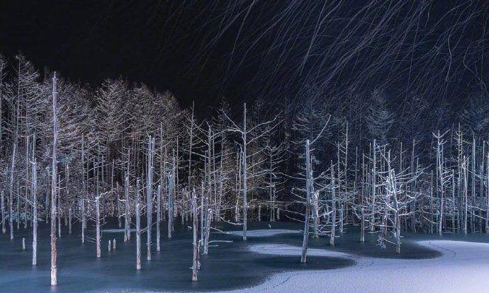 冬季北海道美瑛青池夜景