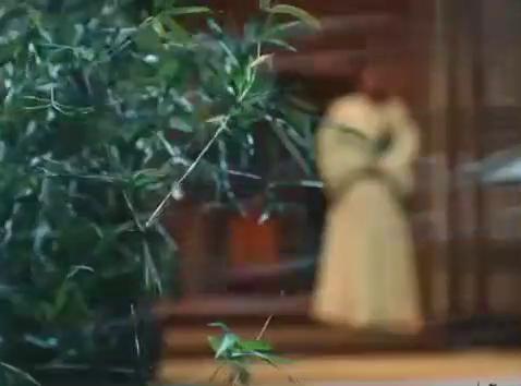 琅琊榜之风起长林:平旌醉酒舞剑,林奚在看着,昊然弟弟帅炸了!
