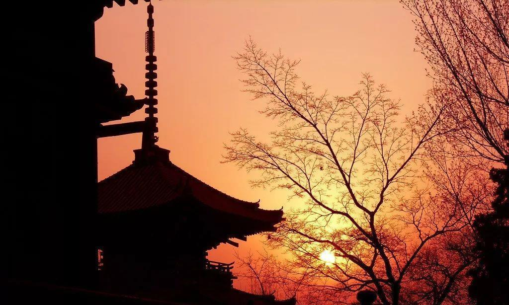 日式旅行美学:秋游枫叶祭,体验生活的慢与美