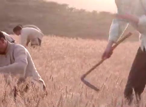 老农民:秋收季节到了,牛大胆带着新面馒头去祭拜父亲祖上