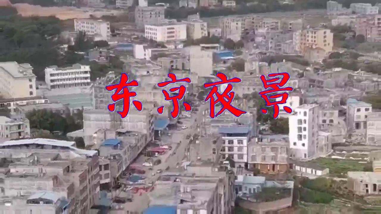 邓丽君的《东京夜景》,唱的太走心了,超级好听