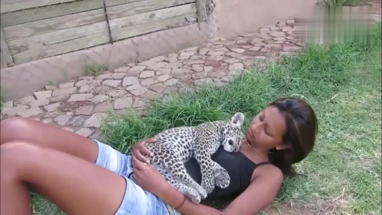 小姐姐抱着小猎豹睡觉,小猎豹睡得很香很有安全感