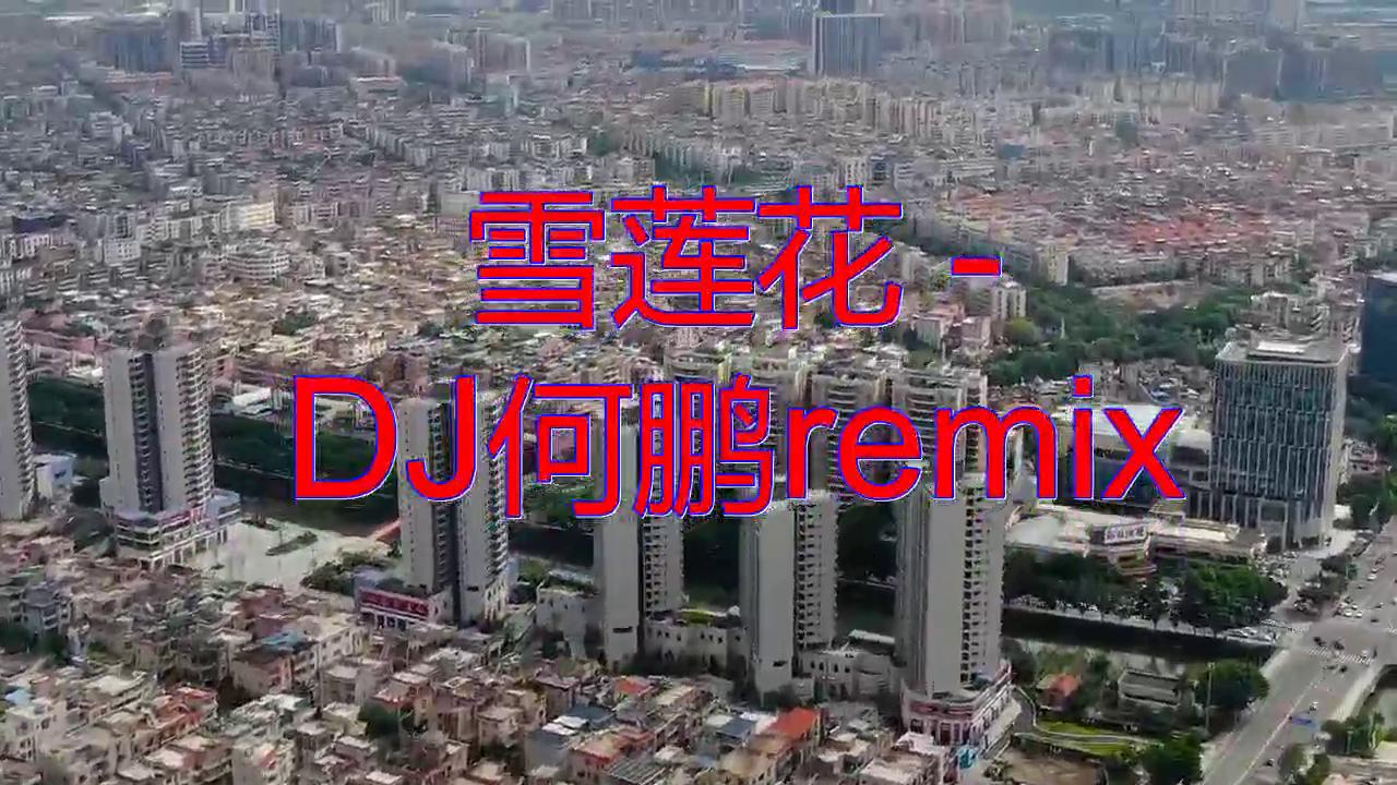 雨禾《雪莲花 - DJ何鹏remix》,感觉真的很好听!
