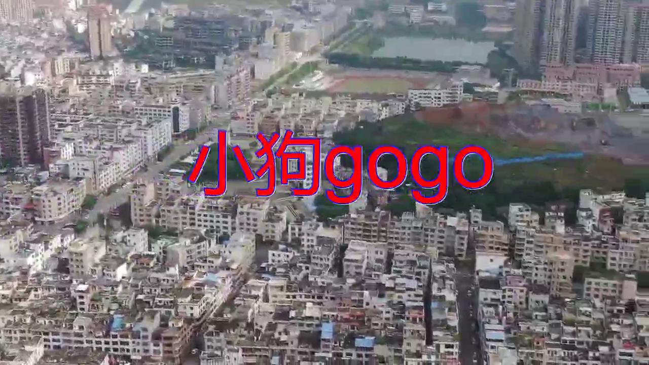 分享安琪儿的经典歌曲《小狗gogo》,歌声清澈,无比动人